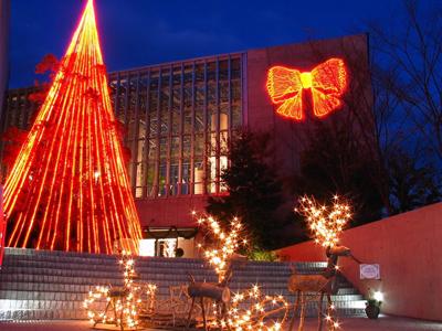 奇跡の星の植物館クリスマスイルミネーション2