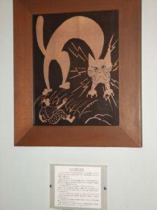 古水の浦の赤猫.JPG