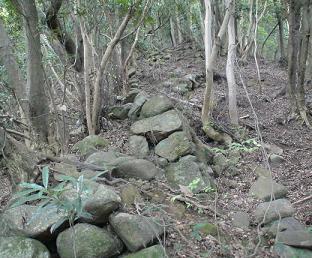 登り石垣�.jpg