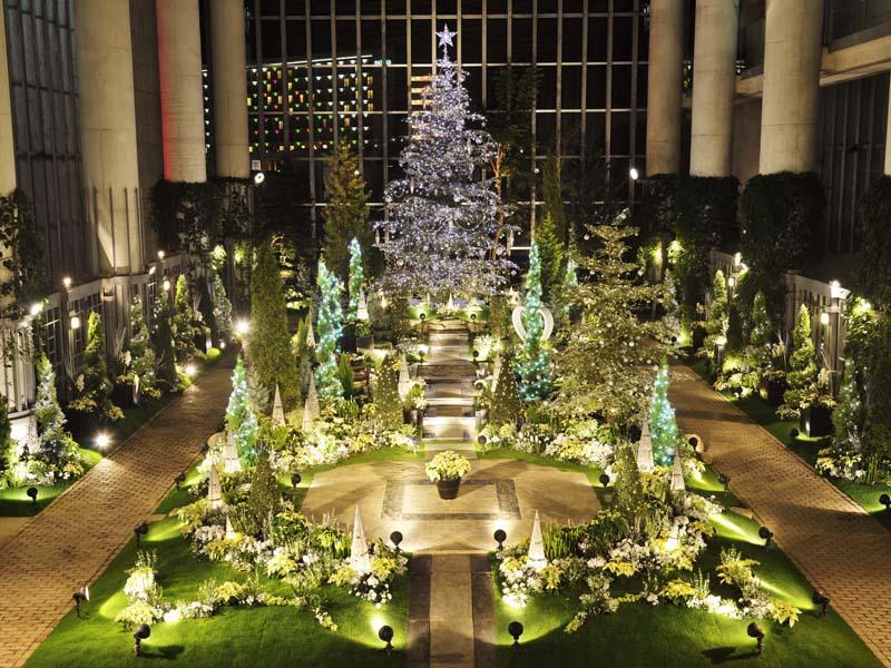 奇跡の星の植物館「クリスマスフラワーショー2018」